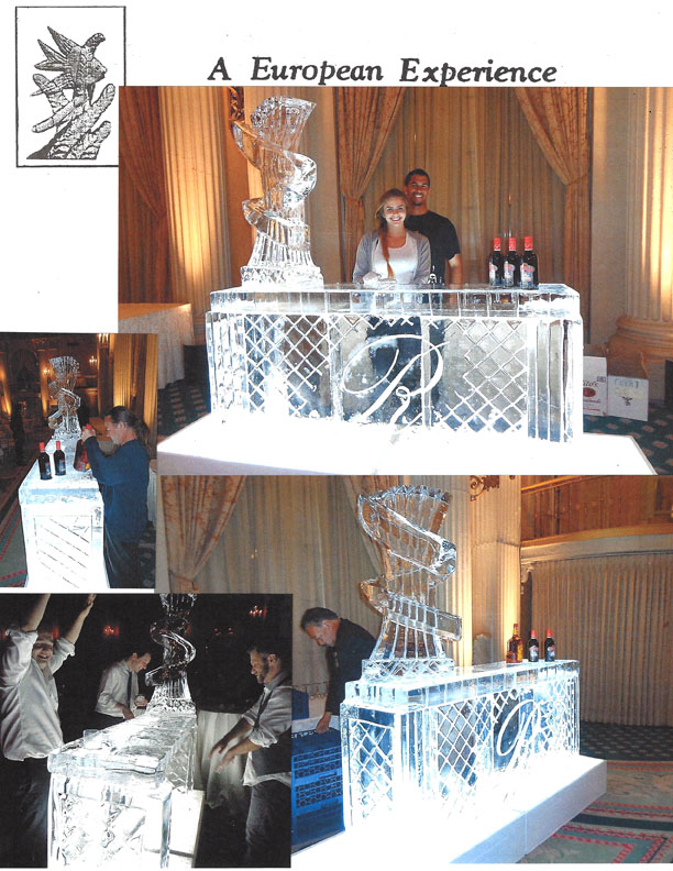 Ice Bar with Shot Luge